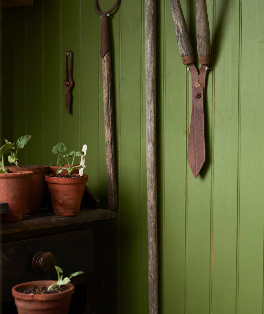 old wooden green shed with old garden tools hanging up next to old terracotta pots with little plant seedlings poking out