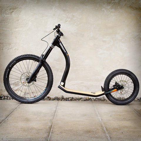 DH IRON SCOOTER