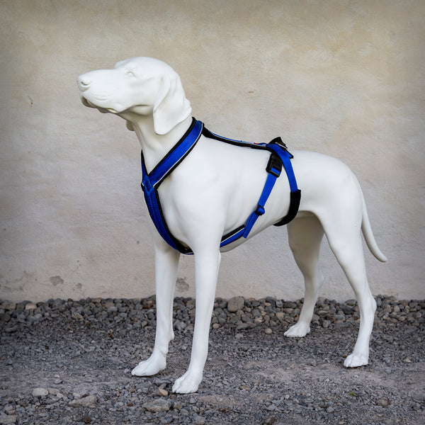 TREKKING-HARNESS