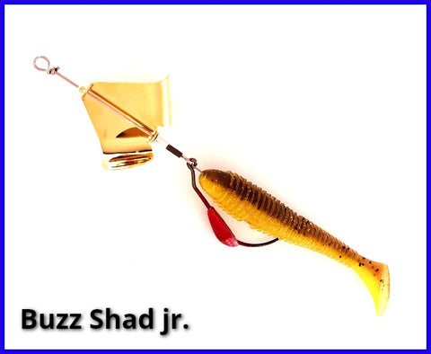 Buzz Shad jr.