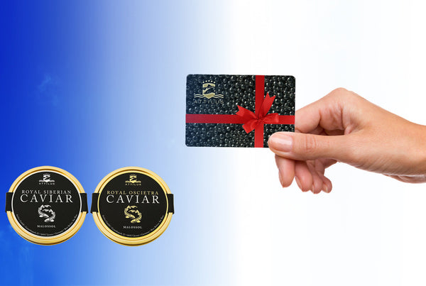 Attilus Caviar Gift card | Gift Ideas | Buy Caviar online UK | London