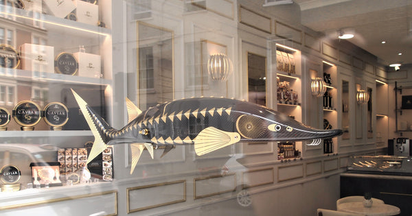 Attilus Caviar Opens a shop in London