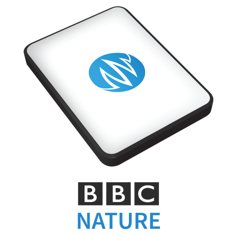 The BBC Nature Sound Effects Library