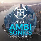 NYC Ambisonics Vol. 2