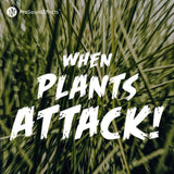 When Plants Attack!