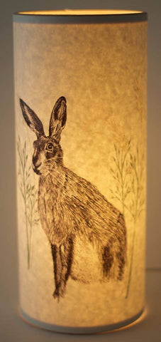 A Northern Light hare lamp