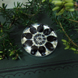 Nightshade - silver plated brooch
