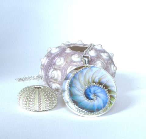 Nautilus - silver plated pendant and necklace