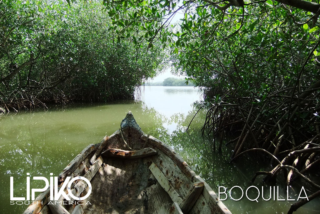 Photo-Boquilla