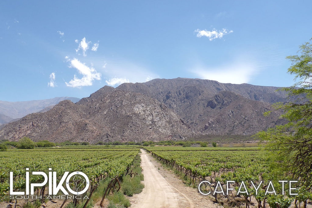 photo-Cafayate