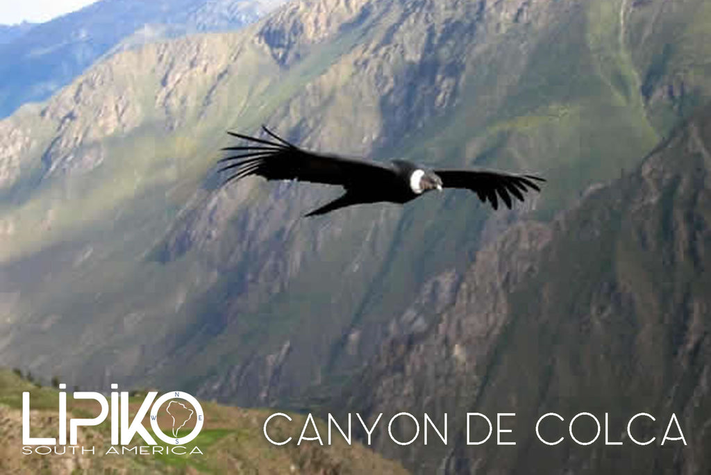 photo-Canyon de Colca1