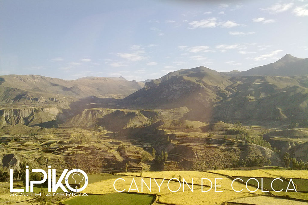 photo-Canyon de Colca