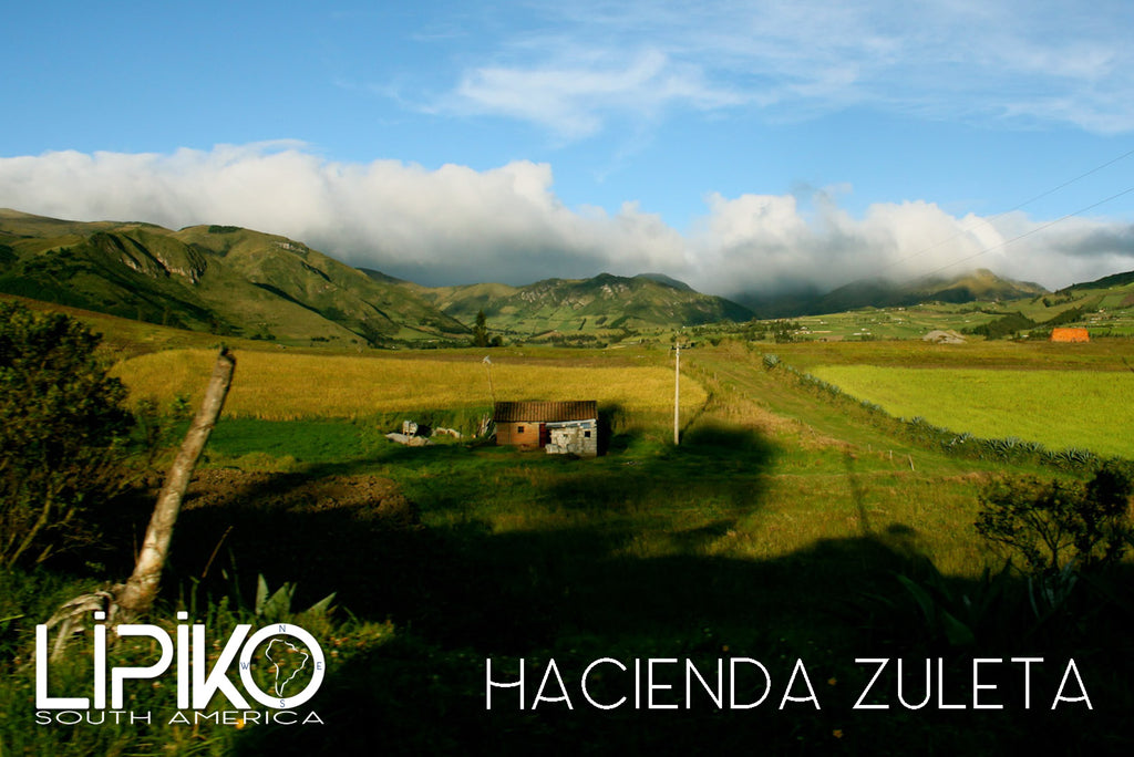 Photo-Hacienda Zuleta