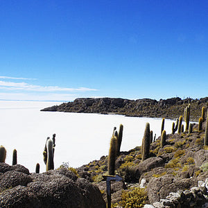 "La Paz - (Uyuni Salt Flats) - La Paz  (Arrival by bus and train ""Wara Wara""- departure with classic night bus)  (total of 5 days) - Code: SLPBLPBTBWNPG3"