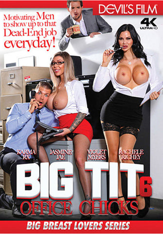 Big Tit Office Chicks 6 XXX DVD