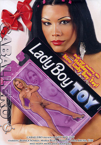 Lady Boy Toy Porn DVD