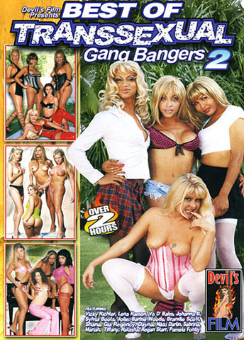 Cheap Best Of Transsexual Gang Bangers 2 porn DVD
