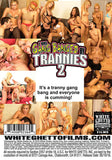 I Was Gang Banged By Trannies 2 Sex DVD
