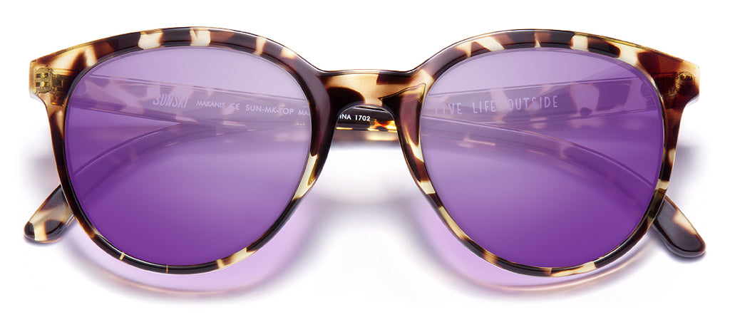 color Tortoise Purple