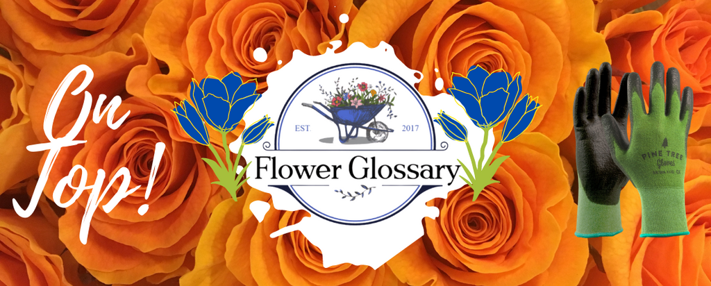 On Top of the List for the Best Gardening Gloves Rated by the FlowerGlossary