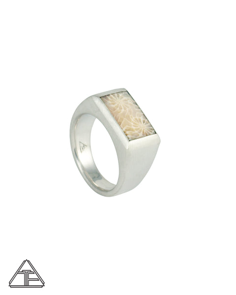Signet Ring: Fossilized Coral