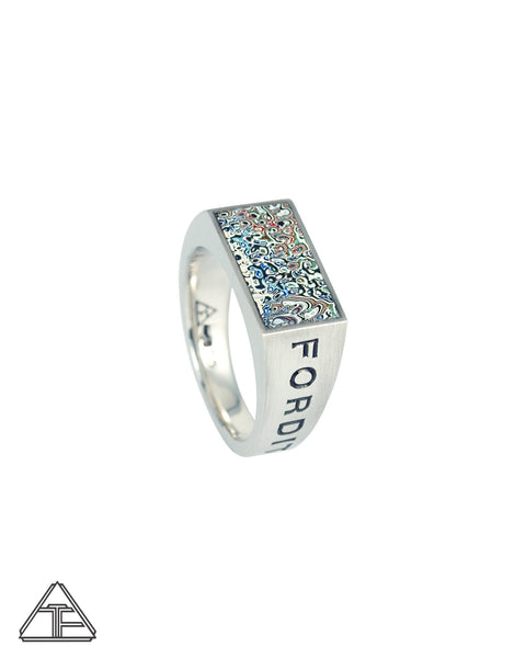 Lux Signet Ring: Engraved with Speckled Fordite Inlay