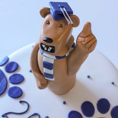 PSU Custom Graduation Cake
