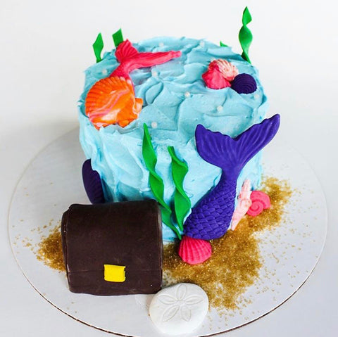 Under the Sea Cake Class (ages 5-12)