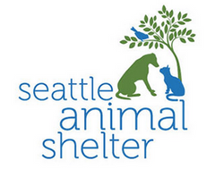 Tabby James Top 10 Valentine's Day Gifts for your Cats Seattle Animal Shelter