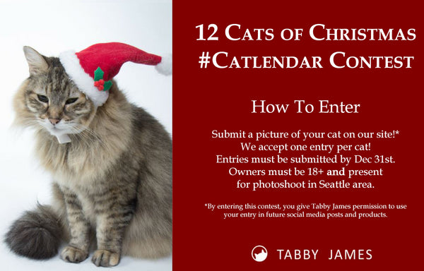 Tabby James Catlander Contest
