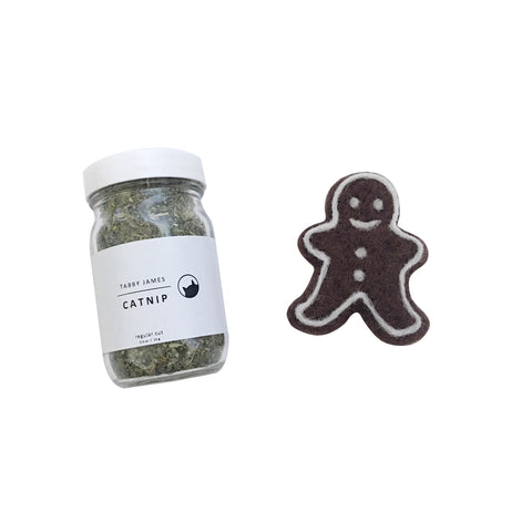 Holiday Set - Gingerbread Man