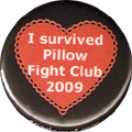 I SURVIVED PILLOW FIGHT CLUB 2009