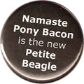 Namaste Pony Bacon is the new Petite Beagle
