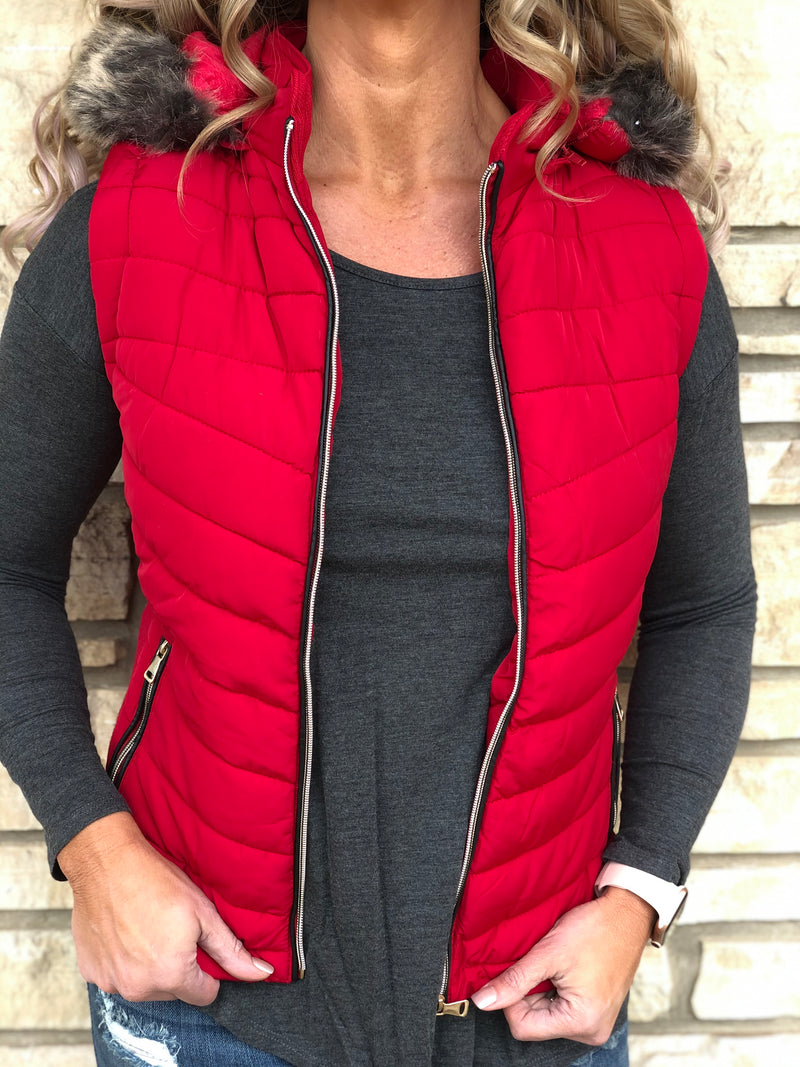 Alpine Hooded Vest Final Sale