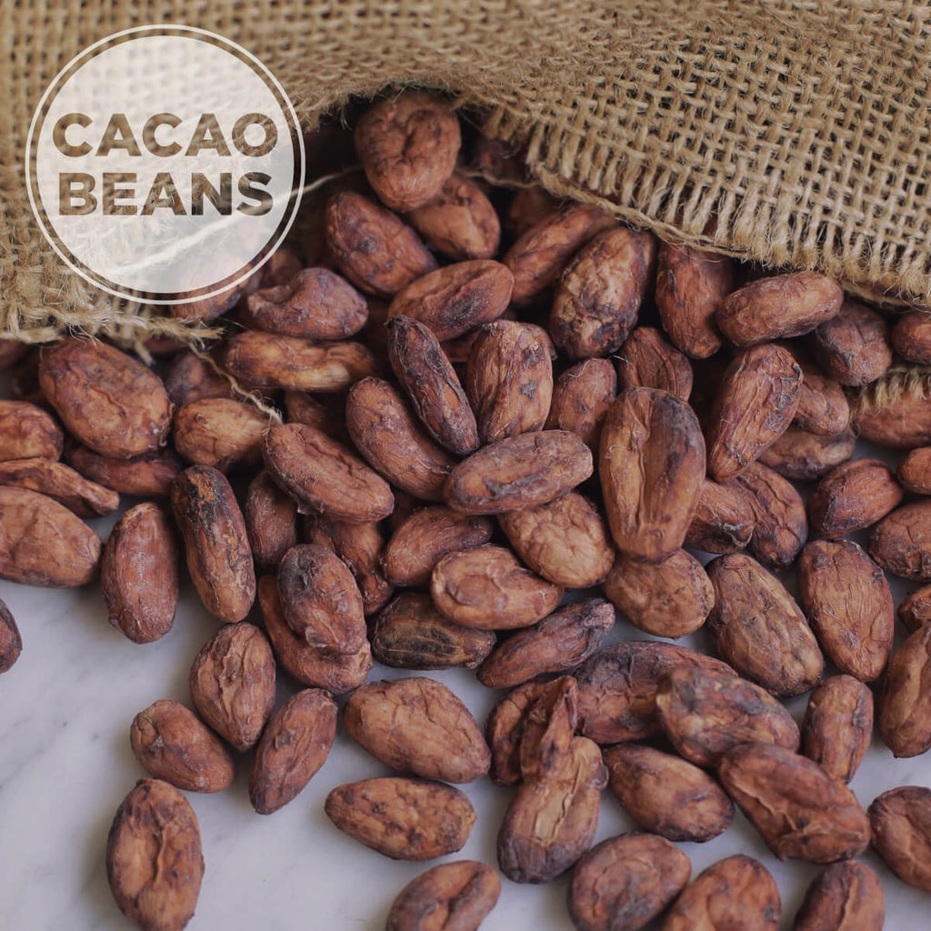 Unroasted Cacao Beans