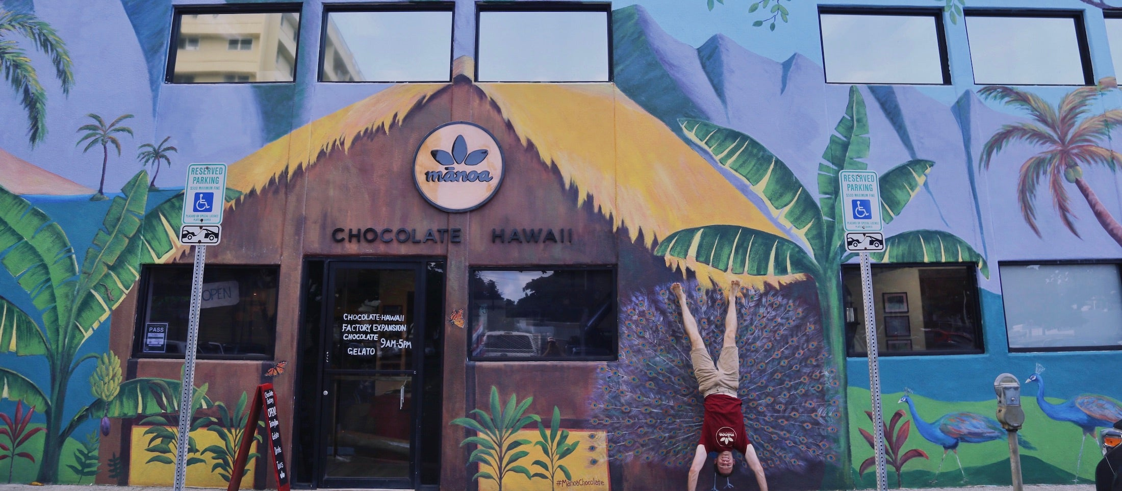 manoa chocolate factory mural