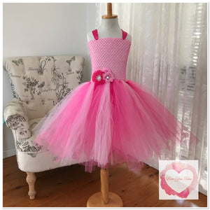 Pretty in pinks Tutu dress