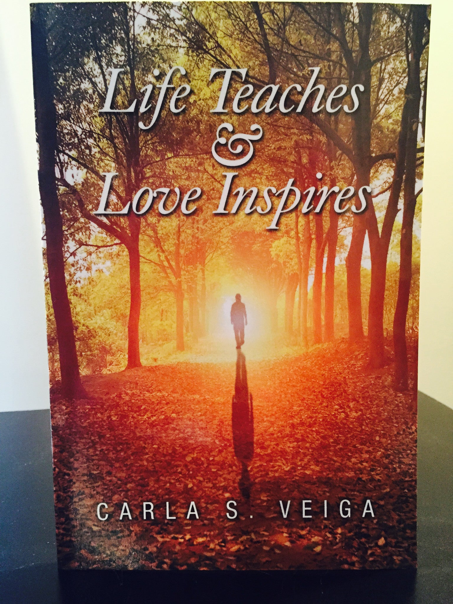 Life Teaches & Love Inspires Poetry Book 2014
