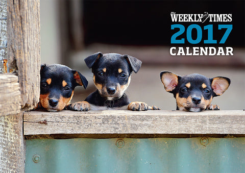 The Weekly Times 2017 Dogs Calendar