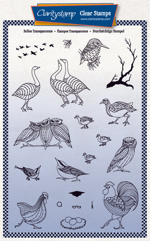 Feathered Friends Miniatures A5 Stamp & Mask Set