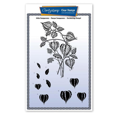 Chinese Lantern Floral Spray Unmounted Clear Stamp Set