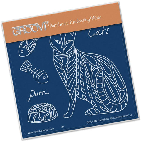 Cat Front <br/>A6 Square Groovi Baby Plate <br/>(Set GRO-AN-40527-01)