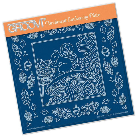 Woodland Squirrel & Frame <br/>A5 Square Groovi Plate