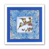 Garden Birds + MASK <br/>Unmounted Clear Stamp Set