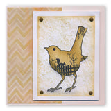 Bird Outline + MASK <br/>Unmounted Clear Stamp Set
