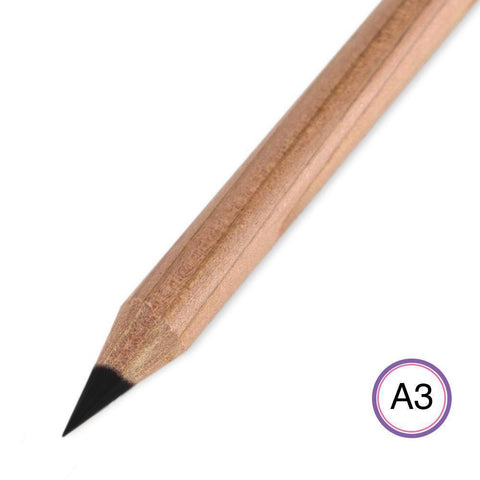 Perga Liner - A3 Black Aquarelle Pencil