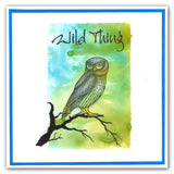 Wise Owls + MASK <br/>Unmounted Clear Stamp Set