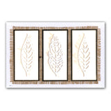 Funky Foliage <br/>Unmounted Clear Stamp Set