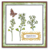 Shepherd's Purse <br/>Unmounted Clear Stamp Set