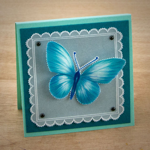 Claritystamp Tina/'s Butterfly Fun A5 Square Groovi Parchment Embossing Plate GRO
